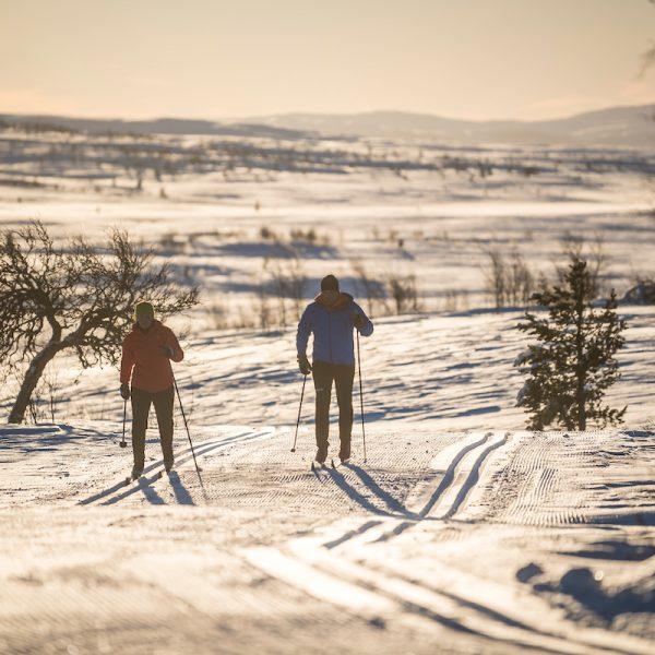 Ski nordique Norvège
